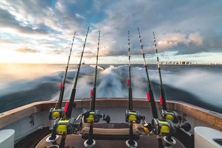 6 Phishing Rods